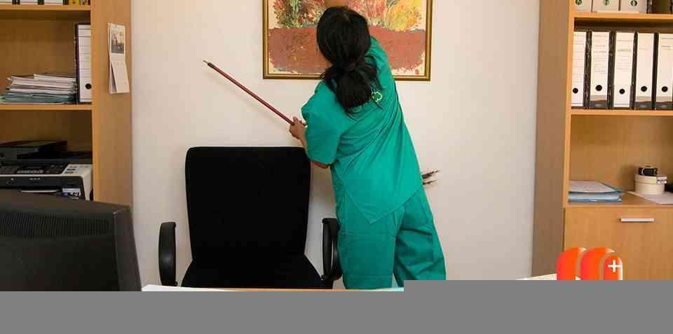 limpieza de despachos