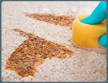 Limpieza de moqueta en Butarque