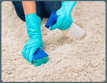 Limpieza de moqueta en Hoyo de Manzanares
